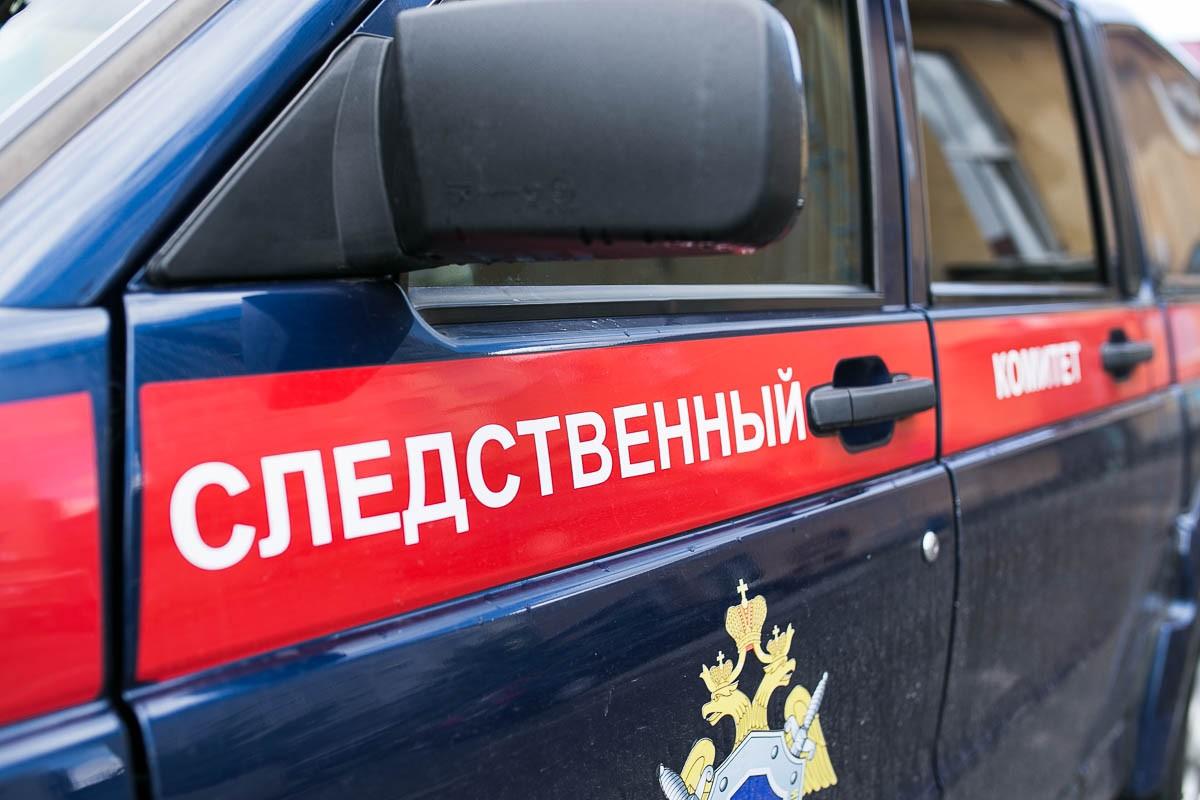 Следком Новосибирска прокомментировал смерть «ученицы» секты Саи Бабы